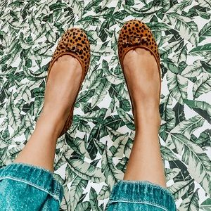 diane von furstenburg / cheetah calf hair flats